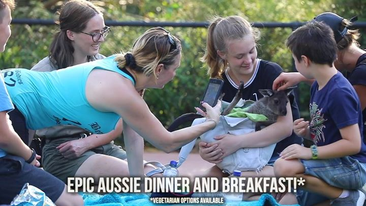Aussie Bush Wildlife Sleepout!